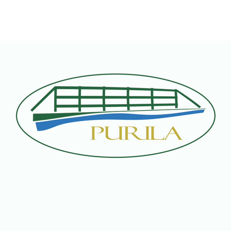 Riin.eu Disain ja firma tunnusgraafika Purila logo