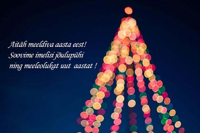 Riin.eu-uudiskiri-jõulukaart